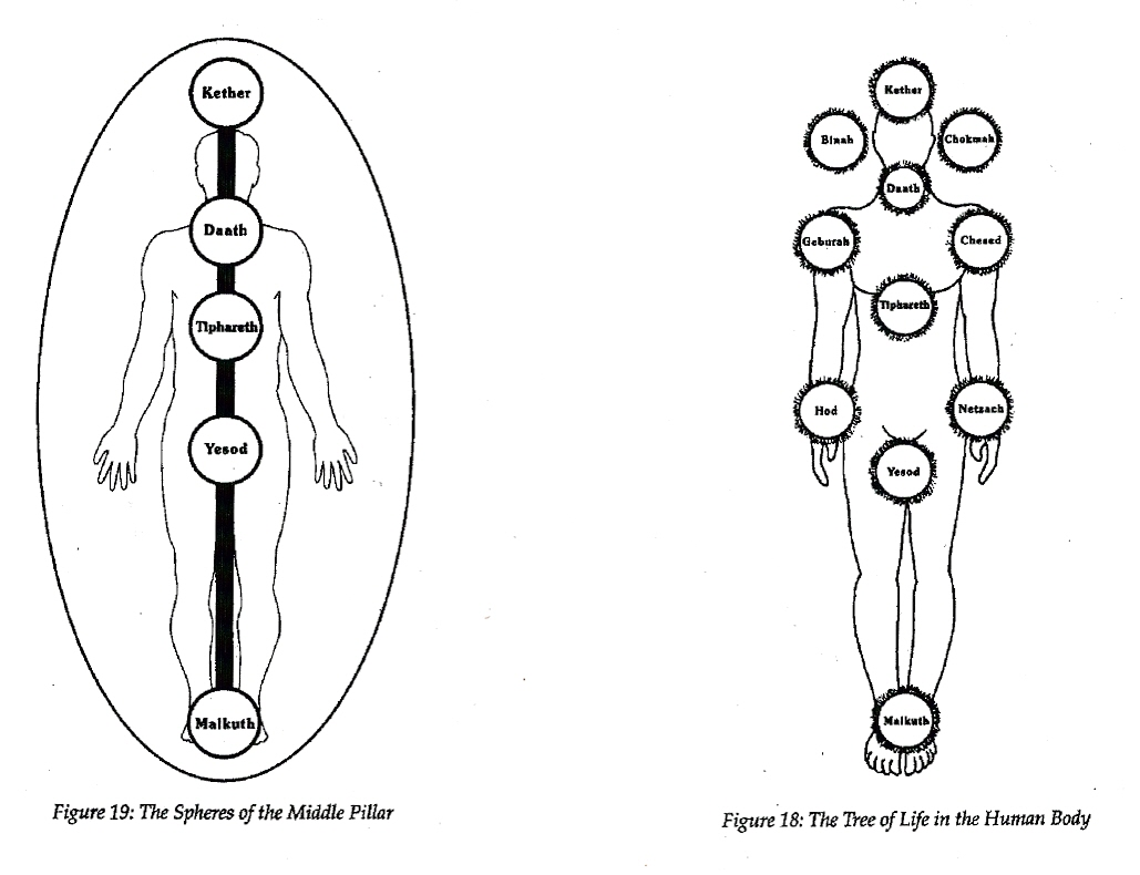 Climbing The Tree Of Life In transformational kabbalah the tree of life is used as a pragmatic tool for seeing how and why things, people, and events manifest the sefirot of the tree of life. the philosopher s wheel